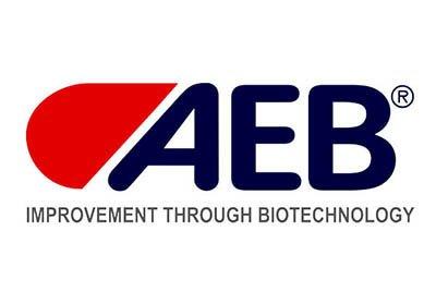 AEB Group